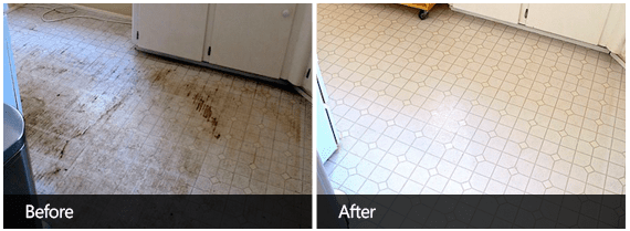 Tile Cleaning Before & After First